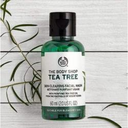 Tea Tree Skin Clearing Facial Wash 8.4 fl oz.