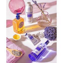 L'Occitane 歐舒丹官網 精選保養產品特惠,收身體乳護手霜等