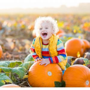 Up to 69% off Pumpkin Patch @ Groupon