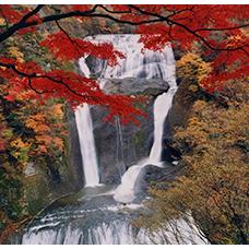 列車で行く 秋のおすすめ日帰り旅行・ツアー特集|えきねっと