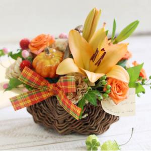 秋の花・ハロウィン特集|イイハナ