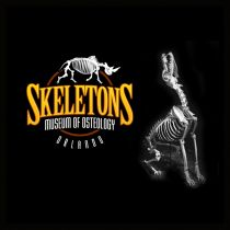 Over 45% off Skeletons: Museum Of Osteology