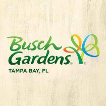 Over 30% off Busch Gardens Tampa Bay Tickets