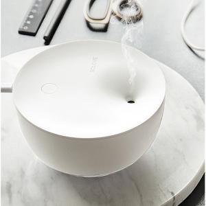 Ultrasonic Cool Mist Humidifier (Large Capacity)