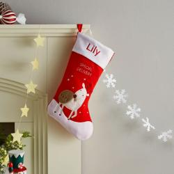 My 1st Years Personalized Red Special Delivery Stocking