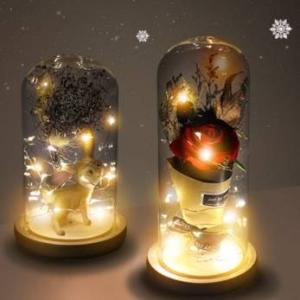예쁜 LED 유리돔안 무드등으로 어두운 내 맘을 환하게 비춰요♥