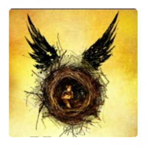 Harry Potter And The Cursed Child @ Expedia