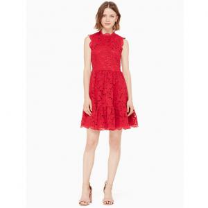 poppy field lace dress