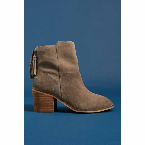 Liendo by Seychelles Arctic Tasseled Ankle Boots