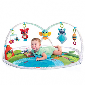 Up to 50% off  Bright Starts @ Amazon