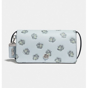 Dinky With Glitter Rose Print SKY/SILVER