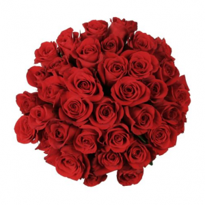 250 Red Roses