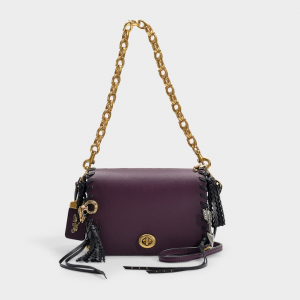 coach DINKY 19 CHARMS BAG IN MULTICOLOR PRUNE CALFSKIN