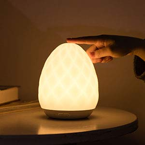 $17.24 Seabiscuit Touch Lamp, Timer Setting Dimmable Warm White @ Amazon