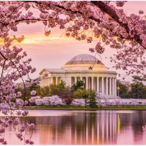 Hilton 希尔顿酒店 2019华盛顿樱花节大促,低至8折