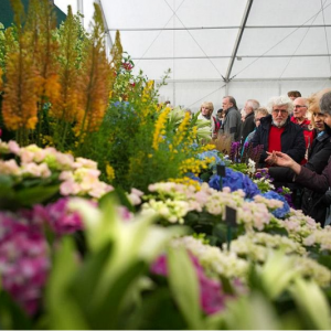 RHS Flower Show Cardiff  at 12-14 April 2019 tickets From  £11 @Royal Horticultural Society
