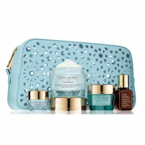 Estée Lauder 5-Pc. Protect & Refresh For Healthy, Youthful-Looking Skin Set