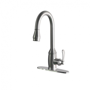 Belle Foret Single-Handle Pull-Down Sprayer Kitchen Faucet in Stainless Steel