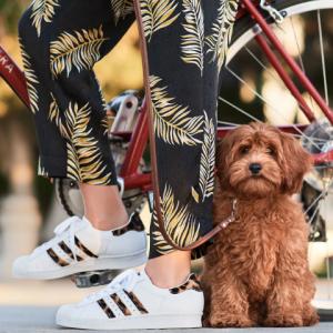 Neiman Marcus官网 Adidas Superstar 阿迪达斯豹纹运动鞋热卖 立减$27