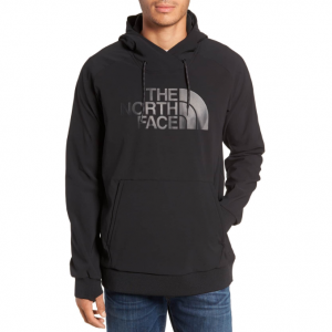 Tekno Logo Regular Fit Hoodie THE NORTH FACE