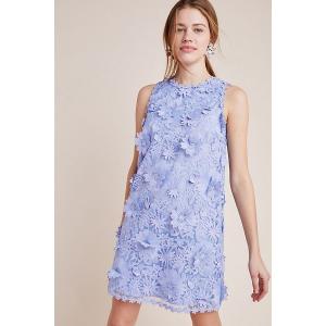 Daisy Lace Shift Dress