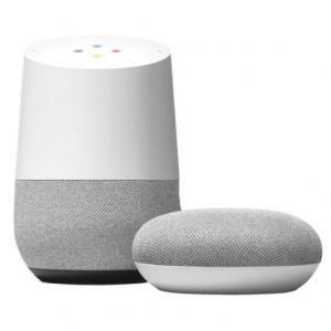 Google Home mini/Echo Dot + Smart plug @ Best Buy