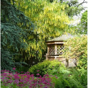 RHS Garden Harlow Carr Flower Show From £5.31 @Royal Horticultural Society
