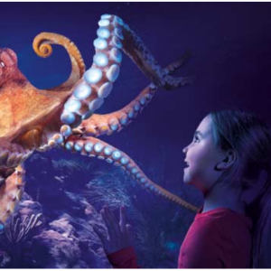 BestOfOrlando - Sea Life Orlando 奥兰多海洋生物馆门票大促