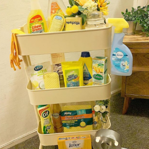 Cleaning Supplies @ Walmart