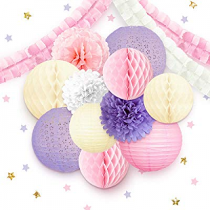 NICROLANDEE Princess Party Decorations for Girls now 50.0% off , Pink Paper Lantern Tissue Pom Pom..