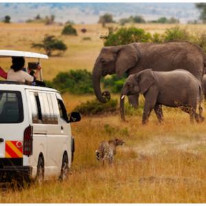 Safari Sale: Flights to Nairobi, Kenya Starting at $567 Roundtrip @Airfarewatchdog