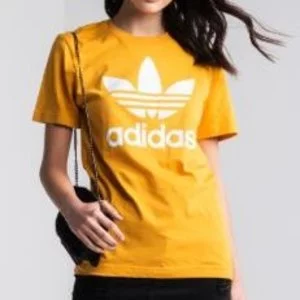Adidas Trefoil Tee Sale @Jimmy Jazz