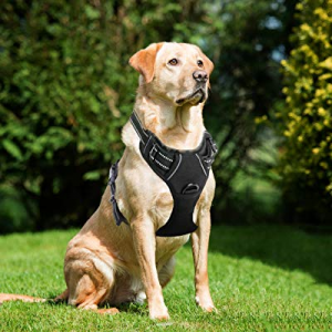 78.0% off Lifepul Front Clip No Pull Dog Vest Harness - Dog Body Padded Reflective Vest with Handl..