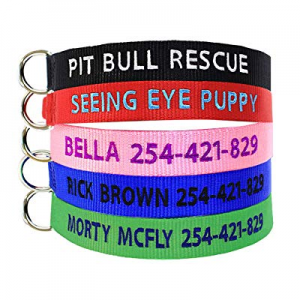 Personalized Dog Collar, Dog Collars Embroidered with Custom Pet Name and Phone Number now 60.0% o..