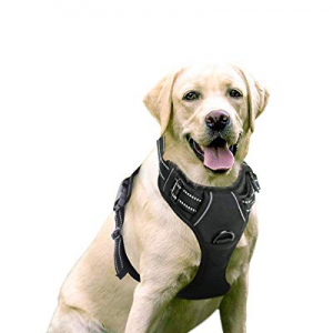25.0% off Rabbitgoo Dog Harness No-Pull Pet Harness Adjustable Outdoor Pet Vest 3M Reflective Oxfo..