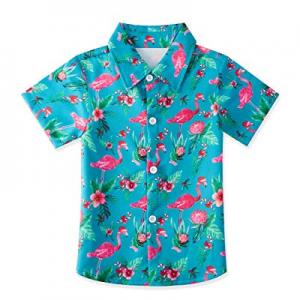 60.0% off RAISEVERN Boys Button Down Shirt Tropical Print Hawaiian Aloha Holiday Short Sleeve Dres..
