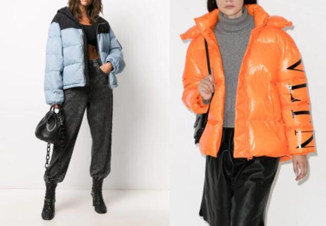 8 Best Designer Down Jacket from Luxury Brands for Women 2020 (10% Cashback)